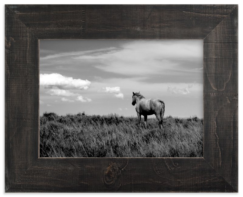 """Desert Dreamer II"" - Art Print by Leslie Le Coq in beautiful frame options and a variety of sizes."