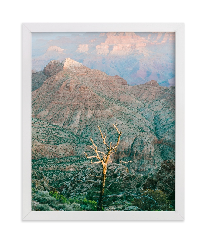 """""""Grand Canyon Tree"""" - Art Print by Anna Western in beautiful frame options and a variety of sizes."""