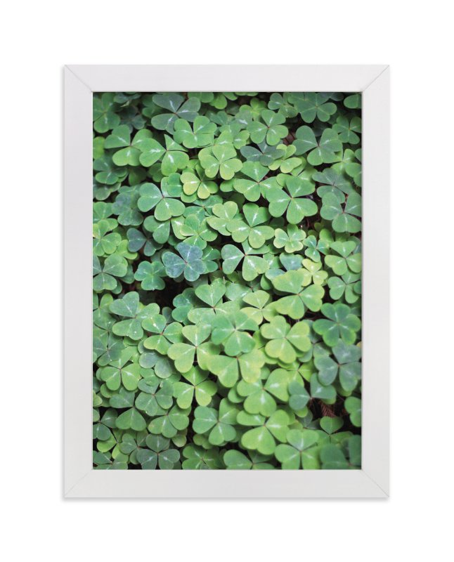 """Giant Muir Wood Clovers"" - Art Print by Sharon Rowan in beautiful frame options and a variety of sizes."