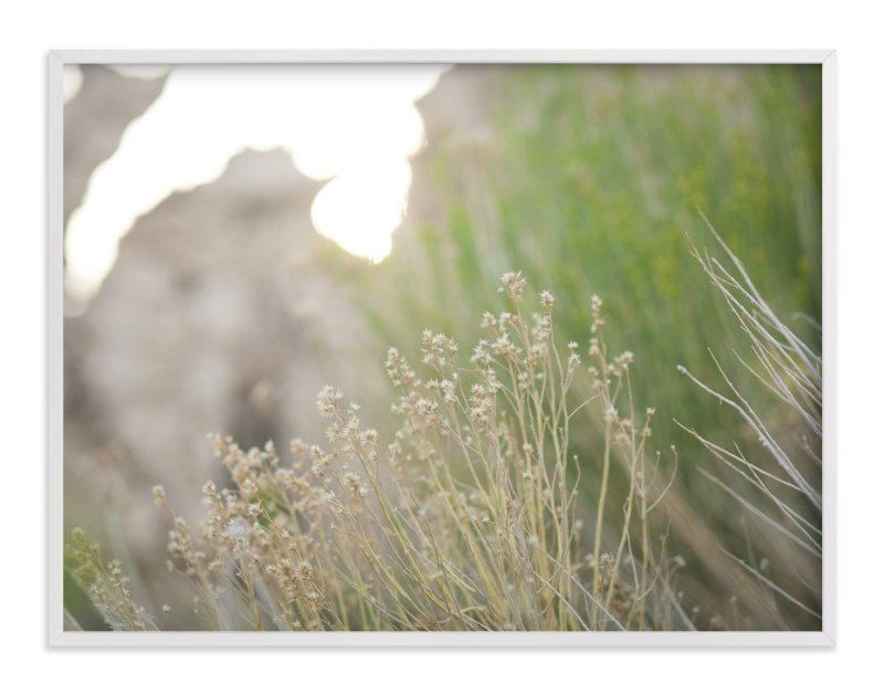 """Gilded Grasses"" - Art Print by Lindsay Ferraris Photography in beautiful frame options and a variety of sizes."