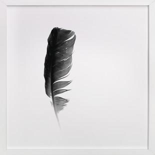 soul feather  Art Print