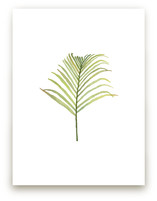 I'm Frond of You No. 1 by Andi Pahl