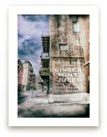 Ginger Mint Julep by Mary Ann Glynn-Tusa
