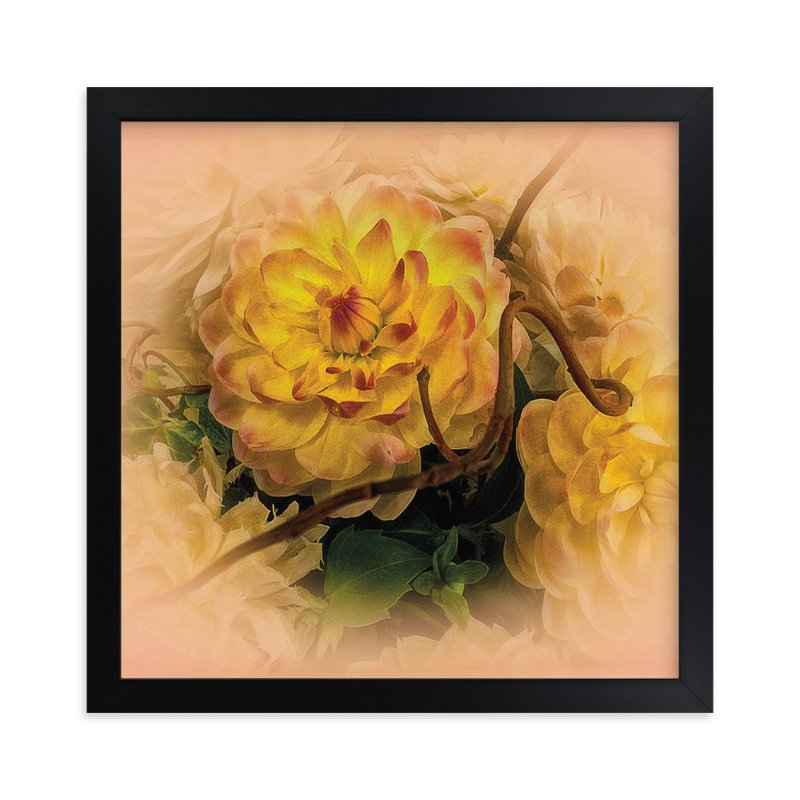 """Yellow Waterlily Dahlia"" - Art Print by A Maz Designs in beautiful frame options and a variety of sizes."