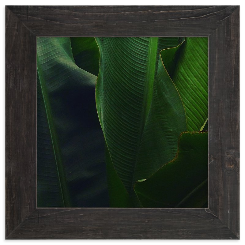 """""""Spring Noir 8"""" - Art Print by Sarah Johnson in beautiful frame options and a variety of sizes."""