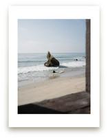 That Malibu Rock by Christian Florin