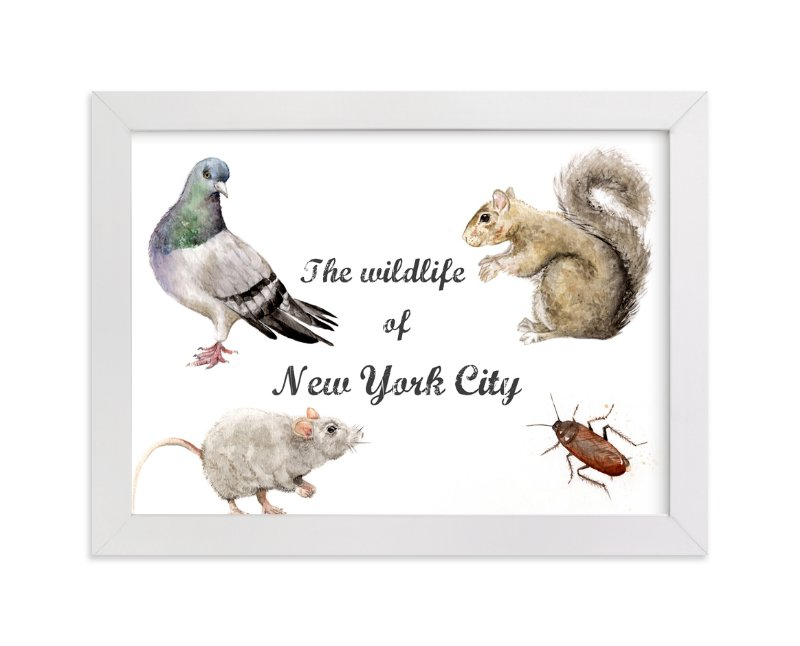 """""""The Wildlife of NYC"""" - Art Print by Lauren Rogoff in beautiful frame options and a variety of sizes."""