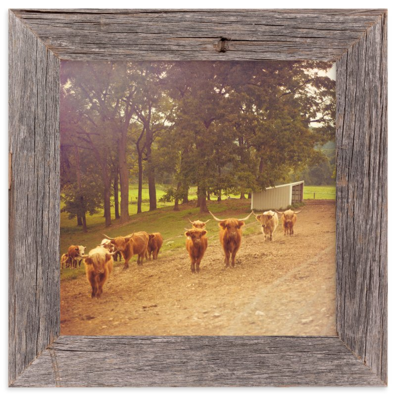 """""""Well, Hello There"""" - Art Print by Smile Peace Love in beautiful frame options and a variety of sizes."""