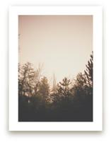 Sunrise Sonny by Katie Short