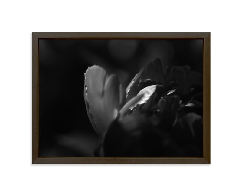 """Peony #2"" - Art Print by Lynn Lehto in beautiful frame options and a variety of sizes."