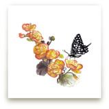 Butterfly by Lauren Matsumoto