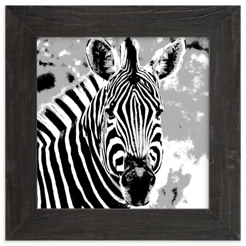 """mr ZEBRA"" - Art Print by Gail Schechter in beautiful frame options and a variety of sizes."