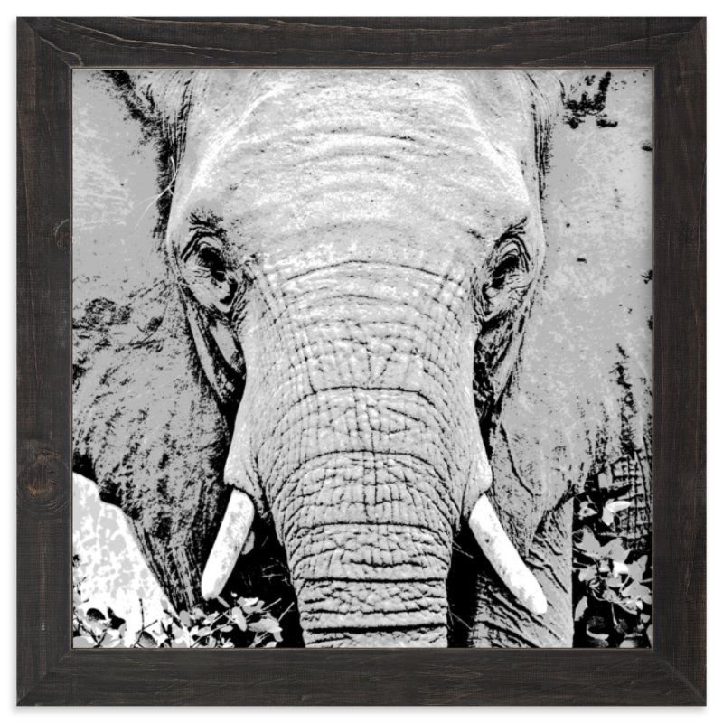 """""""mr ELEPHANT"""" - Art Print by Gail Schechter in beautiful frame options and a variety of sizes."""