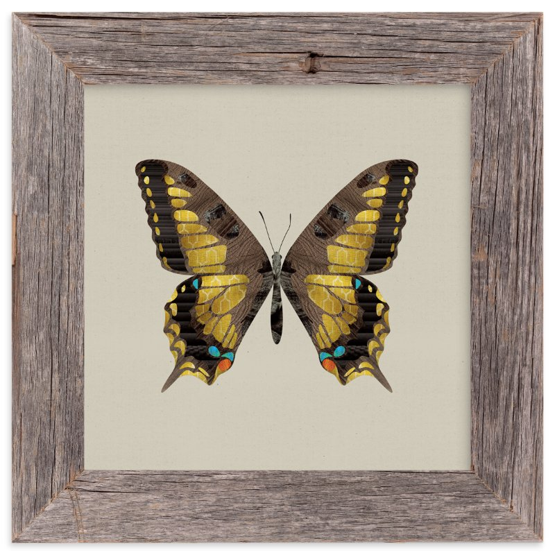 """Swallowtail"" - Art Print by Ann Gardner in beautiful frame options and a variety of sizes."