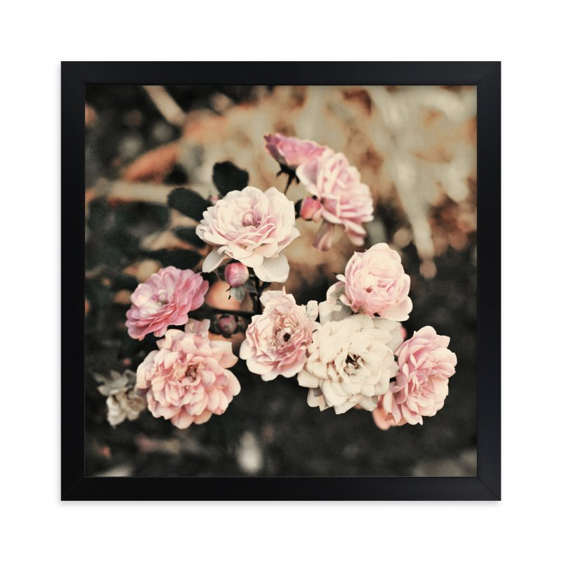"""""""Fading Pink Roses"""" - Art Print by Catherine Culvenor in beautiful frame options and a variety of sizes."""