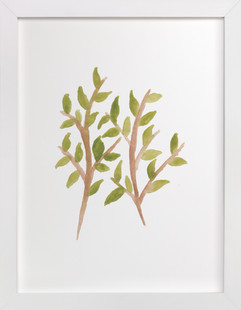 watercolor painting plant  Art Print