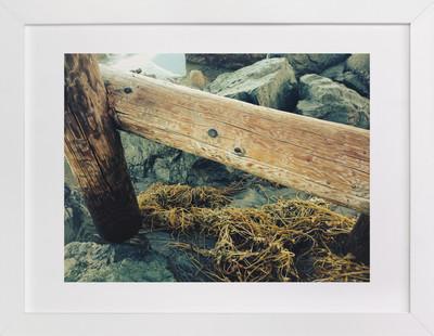 La Jolla Pier Pilings  Art Print