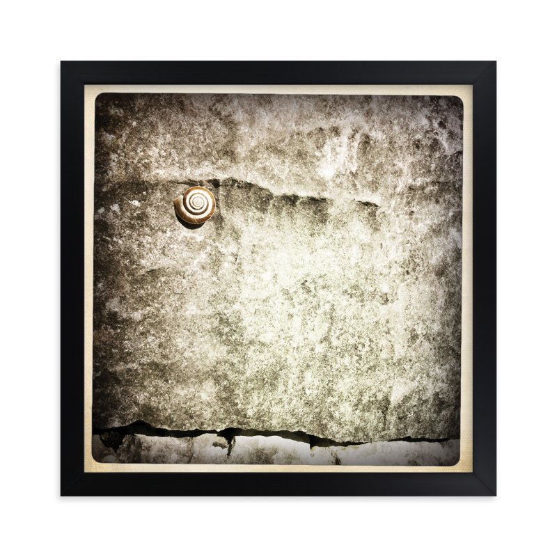 """""""Spiral Shell"""" - Art Print by Margaret Hine in beautiful frame options and a variety of sizes."""