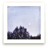 Lilac Moon by Emma Ballou