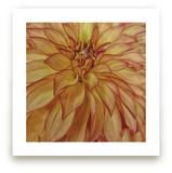 Orange Tip Dahlia by Mazing Designs