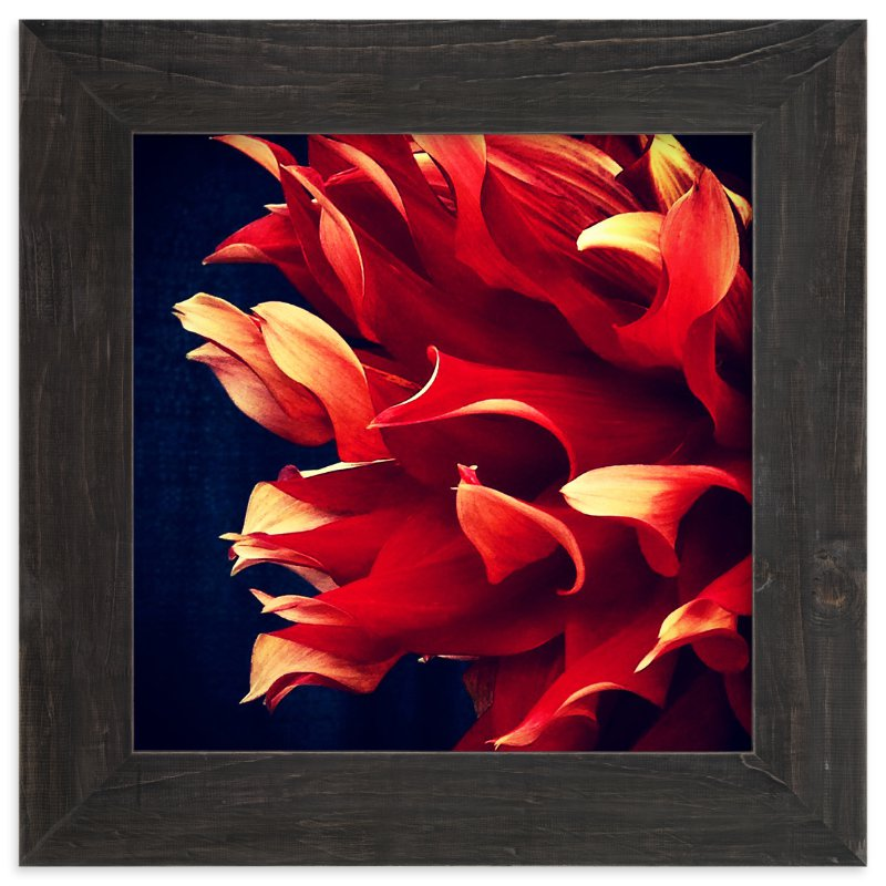 """""""Spring Noir 7"""" - Art Print by Sarah Johnson in beautiful frame options and a variety of sizes."""