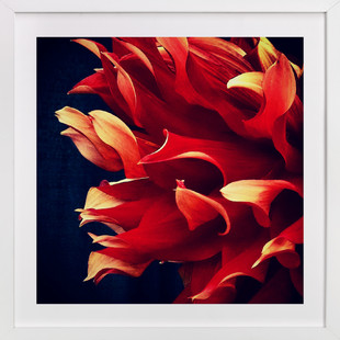 Spring Noir 7  Art Print
