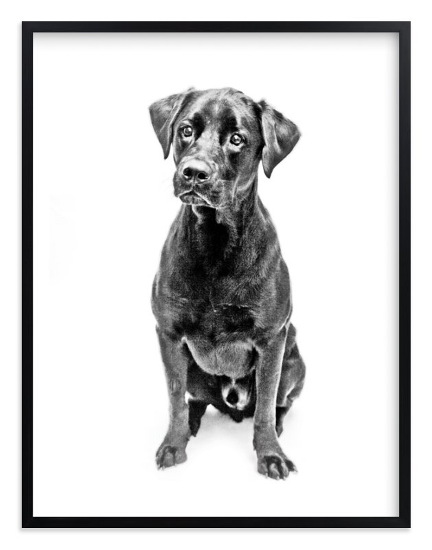 """Happy Lab"" - Art Print by Katrina Leandro in beautiful frame options and a variety of sizes."
