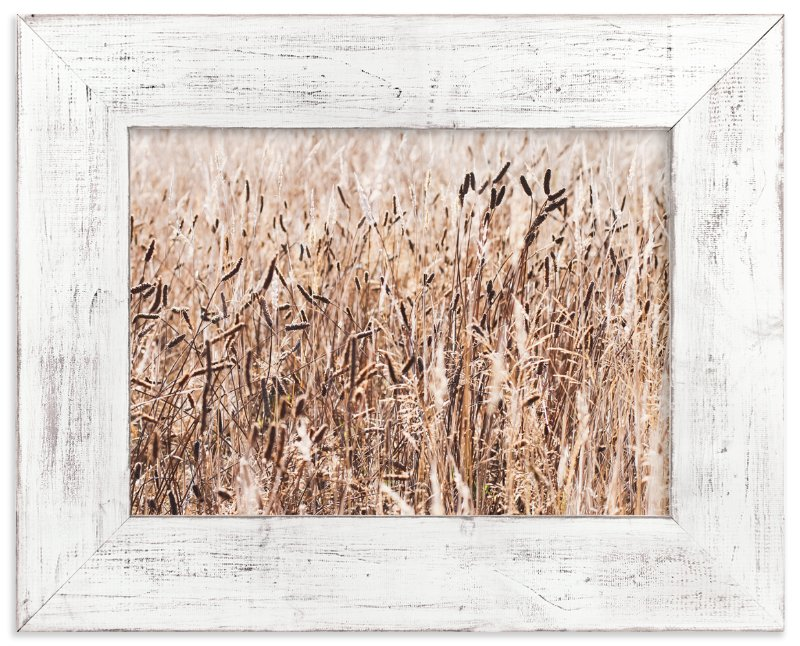 """""""Field of Wheat"""" - Art Print by Annie Montgomery in beautiful frame options and a variety of sizes."""