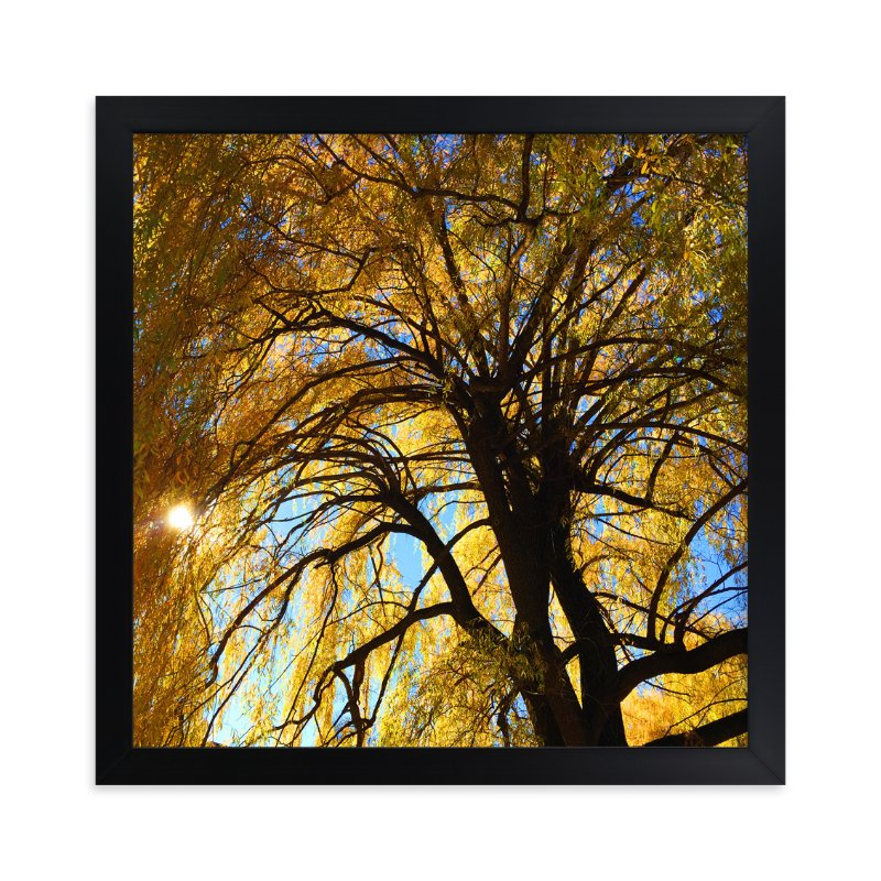 """""""Golden Ray Day"""" - Art Print by Giulia Doyle in beautiful frame options and a variety of sizes."""
