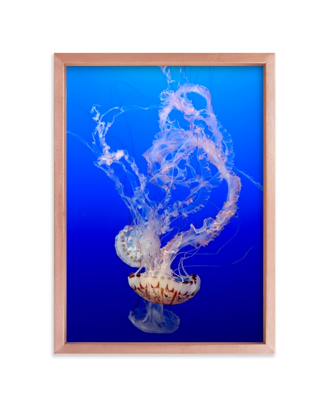 """""""Jelly 1"""" - Art Print by Jan Kessel in beautiful frame options and a variety of sizes."""