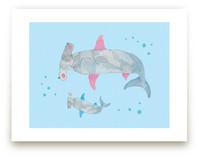 Pink Fin Shark & Baby by Nikki Rene