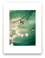 Lyra by Kristin Muntean