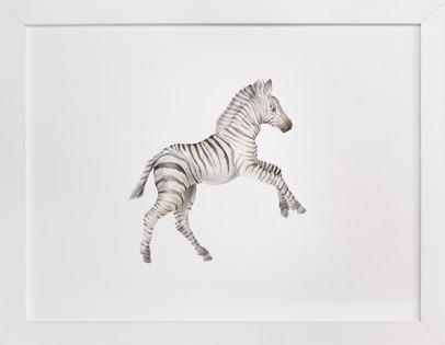 Watercolor Zebra Foal Takes Off