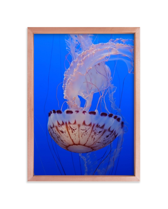 """""""Jelly 2"""" - Art Print by Jan Kessel in beautiful frame options and a variety of sizes."""