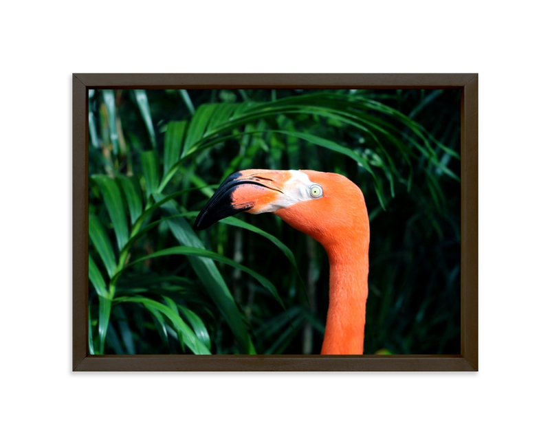 """Flamingo Go"" - Art Print by Janelle Wourms in beautiful frame options and a variety of sizes."