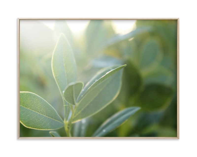"""""""Morning Sparkle"""" by Karen Kaul in beautiful frame options and a variety of sizes."""