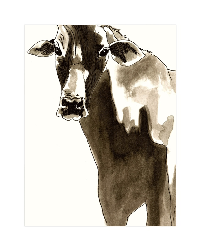 """""""The Gaze of the Cow"""" by Alaine Ball in beautiful frame options and a variety of sizes."""