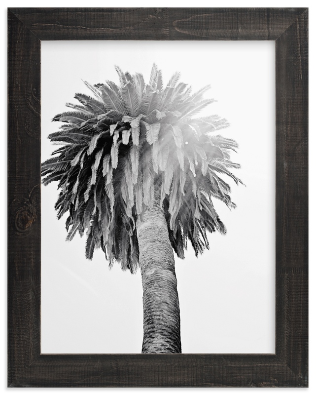 """Puffy Palm"" by Joelle Segal in beautiful frame options and a variety of sizes."