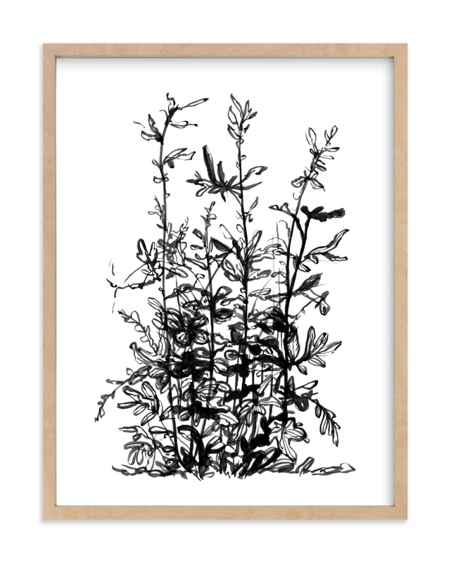 """""""Silverlace Fern"""" by Field and Sky in beautiful frame options and a variety of sizes."""