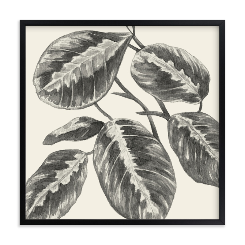 """Maranta Plant"" by Field and Sky in beautiful frame options and a variety of sizes."