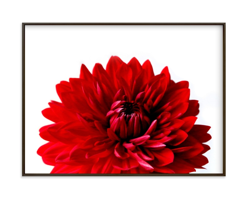 """""""Bold Dahlia"""" by Janelle Wourms in beautiful frame options and a variety of sizes."""