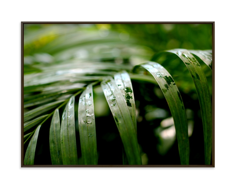 """""""Subdued"""" by Janelle Wourms in beautiful frame options and a variety of sizes."""