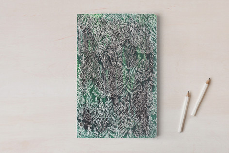 Snow pines Notebooks