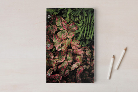 THE JUNGLE ROOM - PART2 Notebooks