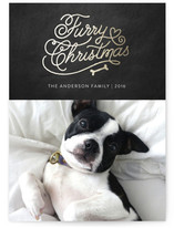 Very Furry Christmas by iamtanya