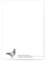 Pigeon by Salina Mack