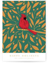 Xmas Cardinal by Belia Simm