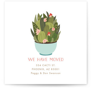 Succulent teacup Moving Announcements