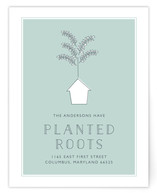Planted Roots