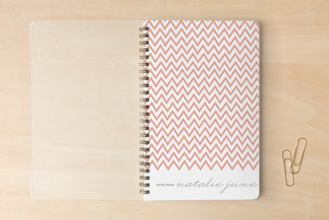 The Perfectionist Notebooks